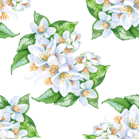 背景のジャスミンの花。葉と花。シームレス パターン。水彩イラスト。