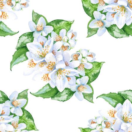 achtergrond jasmijn bloemen. bloemen met bladeren. naadloos patroon. waterverfillustratie. Stockfoto