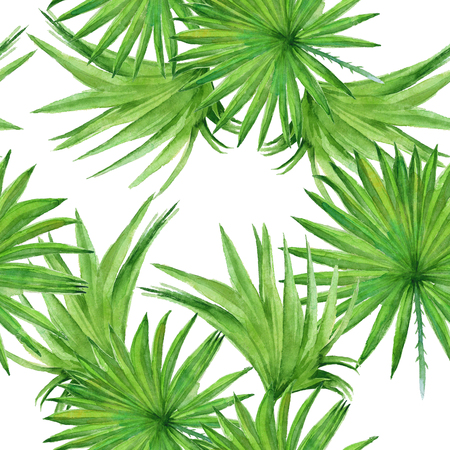 Background palm tree leaves. Seamless pattern. Wallpaper. Watercolor illustration. Banco de Imagens