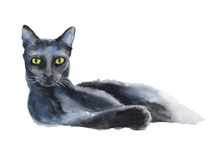 standalone: reclining black cat. a stand-alone sketch. the symbol of Halloween. watercolor illustration. Stock Photo