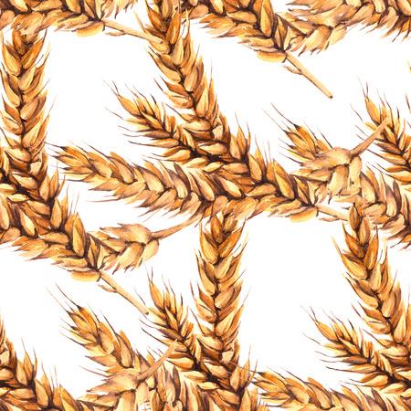 stalks: Background with three stalks of malt. Seamless pattern. Watercolor illustration.