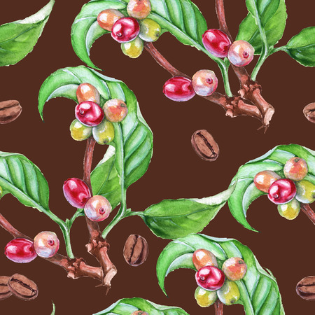 Background tree branch coffee. Mature and not roasted coffee beans. Seamless pattern. Watercolor illustration. Stock Photo