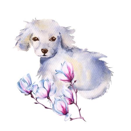 Perro blanco con flor. Aislado en un fondo blanco. Ilustración de acuarela.