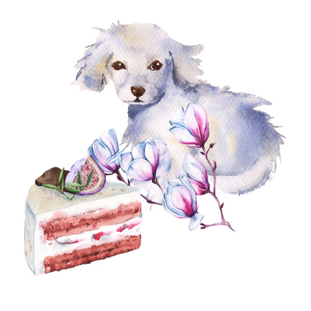 White dog with a flower and a piece of cake. isolated on a white background. watercolor illustration.