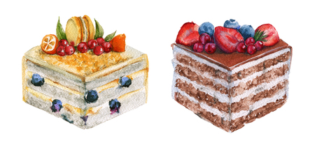 Set a piece of cake. With berries and biscuits. Isolated on a white background. Watercolor illustration.