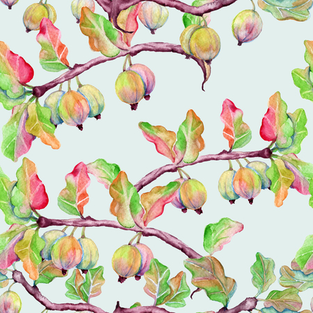Background branch with gooseberry berries. Seamless pattern. Watercolor illustration. Stock Photo