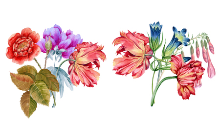 Bouquet of flowers. Isolated on white background. Batanic watercolor illustration