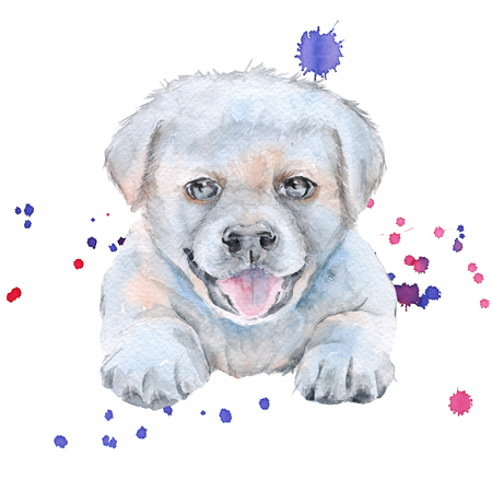 White puppy. dog. Isolated on white background. Watercolor illustration.