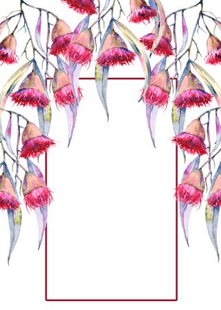 인사말 카드 껌 꽃의 분기합니다. 흰색 배경에 고립. 수채화 그림 스톡 콘텐츠