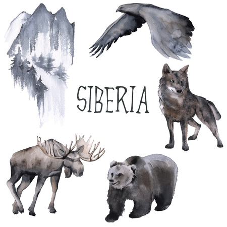 Set of Siberian. Moose, wolf, moon and eagle. isolated on white background. watercolor illustration