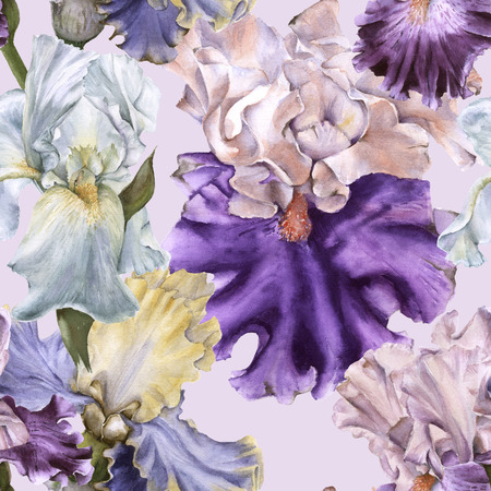 Background with iris. Seamless pattern. Watercolor illustration Stock Photo