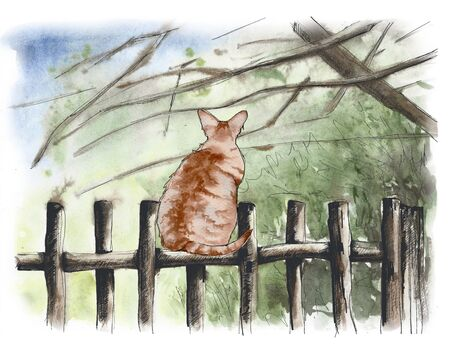 Cat on a rustic wooden fence. Background image. Watercolor illustration