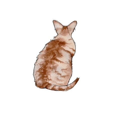 Ginger cat. Isolated on a white background. Watercolor illustration.