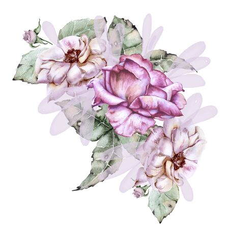 Composition of roses with wild flowers. Isolated on white background. Watercolor illustration Stock Photo