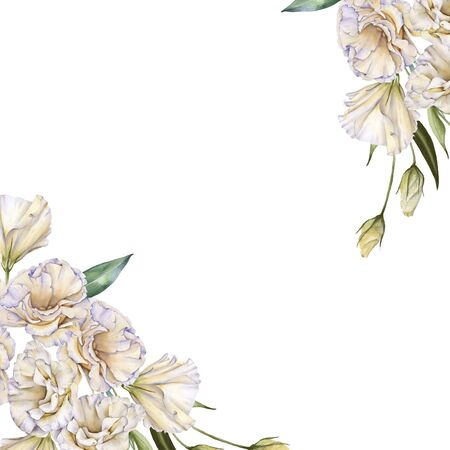 Frame of white roses. Eustoma. Isolated on a white background. Watercolor illustration