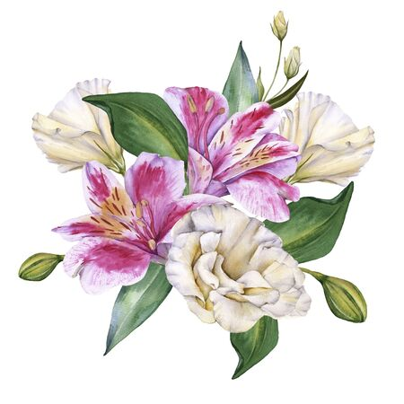 Arrangement of Orchid Flowers. Isolated on a white background. Watercolor illustration.