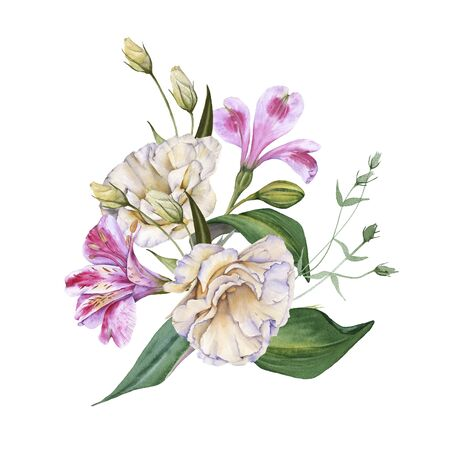 Arrangement of Orchid Flowers. Isolated on a white background.