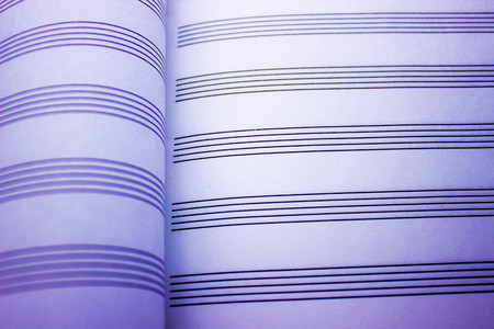 sheet music: blank sheet music notebook for music recording and music