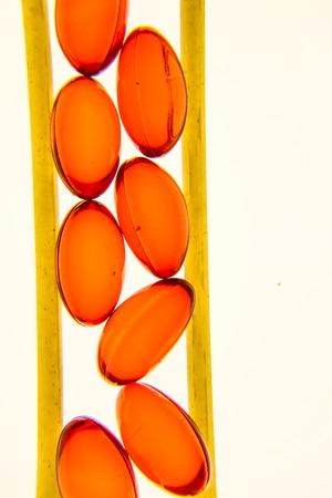 pills, vitamins, pills, spaghetti, pasta, health, nutrition,
