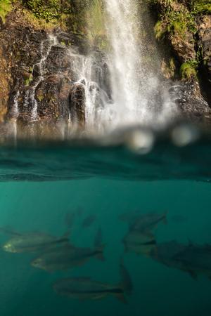 azul: Serra Azul Waterfall - Nobres - Mato Grosso - Brazil