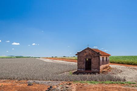 Chapel abandoned at corn plantation - Porto Almeida - SP - Brazil