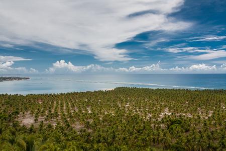 Gunga Beach - Alagoas - Maceio - Brazil