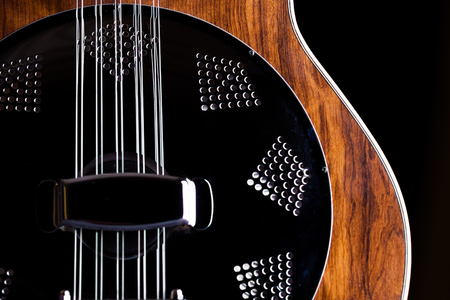 Brazilian 10 strings guitar