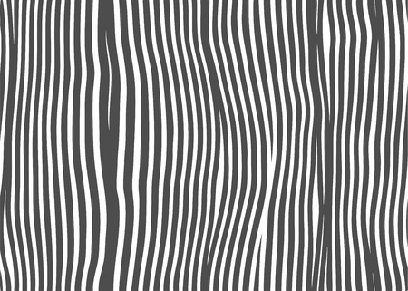 seamless vector texture Zebra Illustration