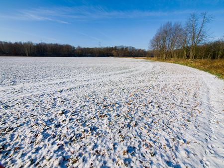 Spring field covered with snow