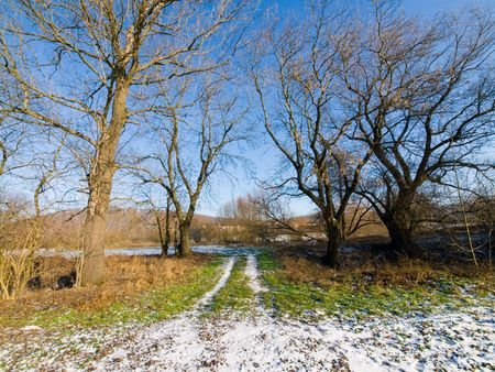 clear path: Spring in average Europe warm, a sunny day