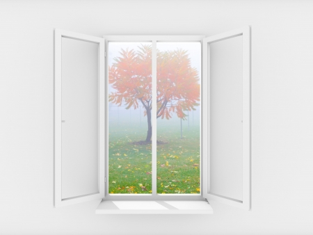 Tree and fog in open window photo