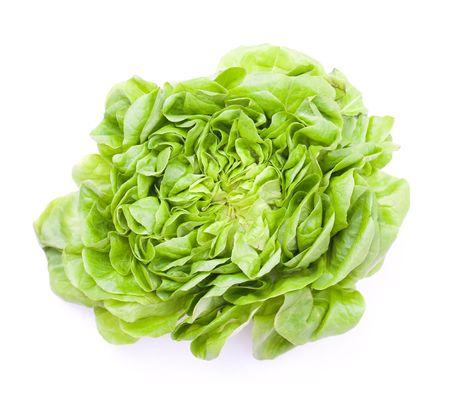 vibrat: Lettuce  Stock Photo