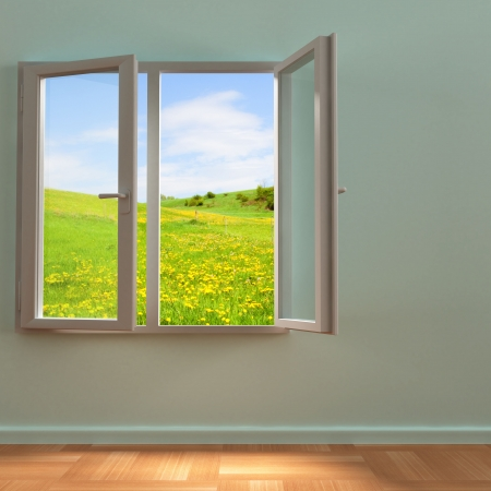 spring field view in open window photo