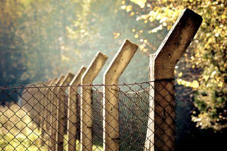 abatis: Fence