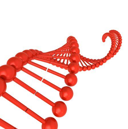 3D DNA molecule model on white Stock Photo - 8186891