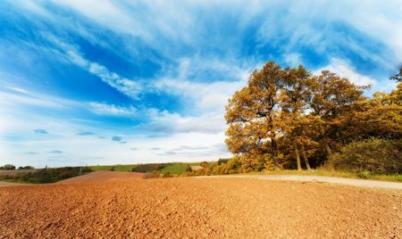 arable land: arable land in spring time and blue sky
