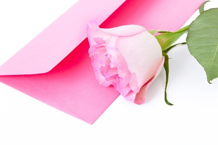 Pink envelope with the letter and a rose on a white background