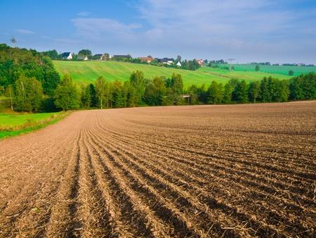 arable: arable field farm and blue summer sky Stock Photo