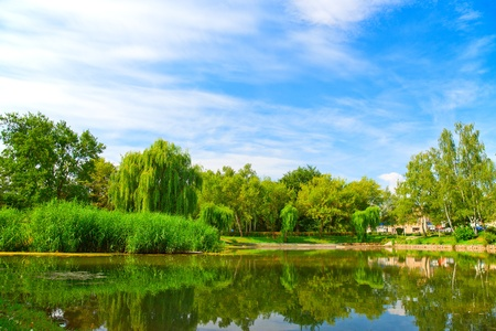 country landscape: Lake in green nature city park