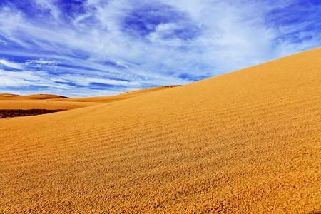 Dune de sable du désert