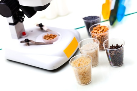Lab of Microbiological Testing for Food Quality Stock Photo - 10953608