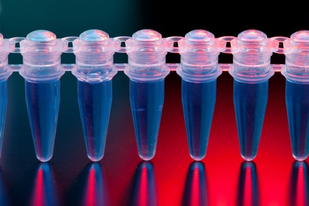 fingerprinting: Cell cultures in micro tubes