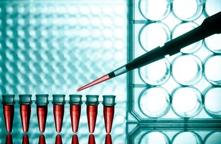 Blood test photo