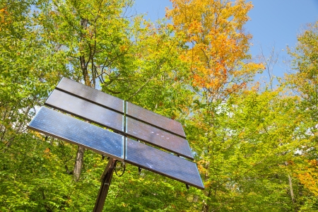 electric cell: Electric solar cell on a background of forest