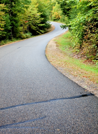 curvature: Curvature the highway in the autumn forest