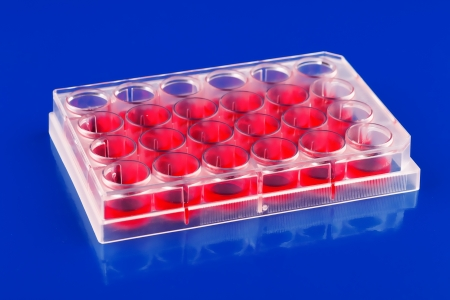 Blood samples in a container for testing diabetes Stock Photo - 14003866