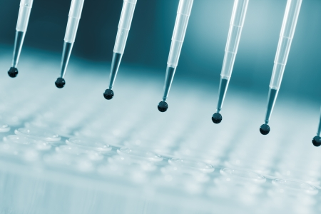 amplification: Tools for PCR amplification of DNA  automatic pipette Stock Photo