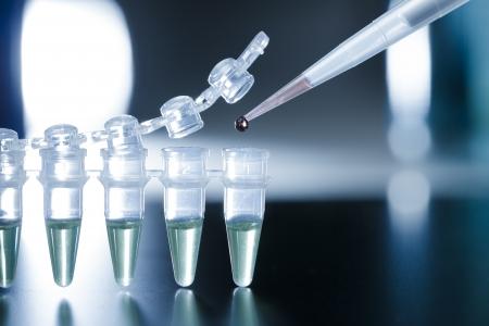 roda: Investigaci�n con c�lulas madre en la franja de PCR Foto de archivo