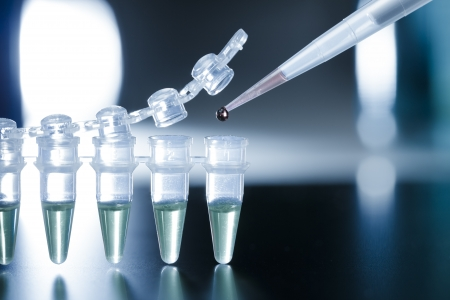 Ricerca sulle cellule staminali nella striscia di PCR Archivio Fotografico