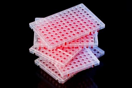 assay: 96 well plates on lab table with red liquid samples Stock Photo